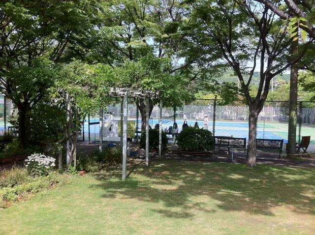 yashima3